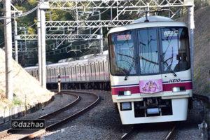 (2/2)8711F百草園梅まつりHM